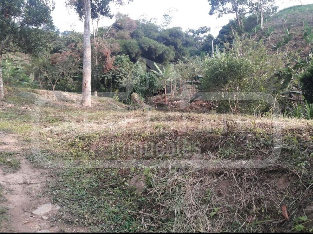COD 200803   LOTE PORTACHUELO RIO NEGRO