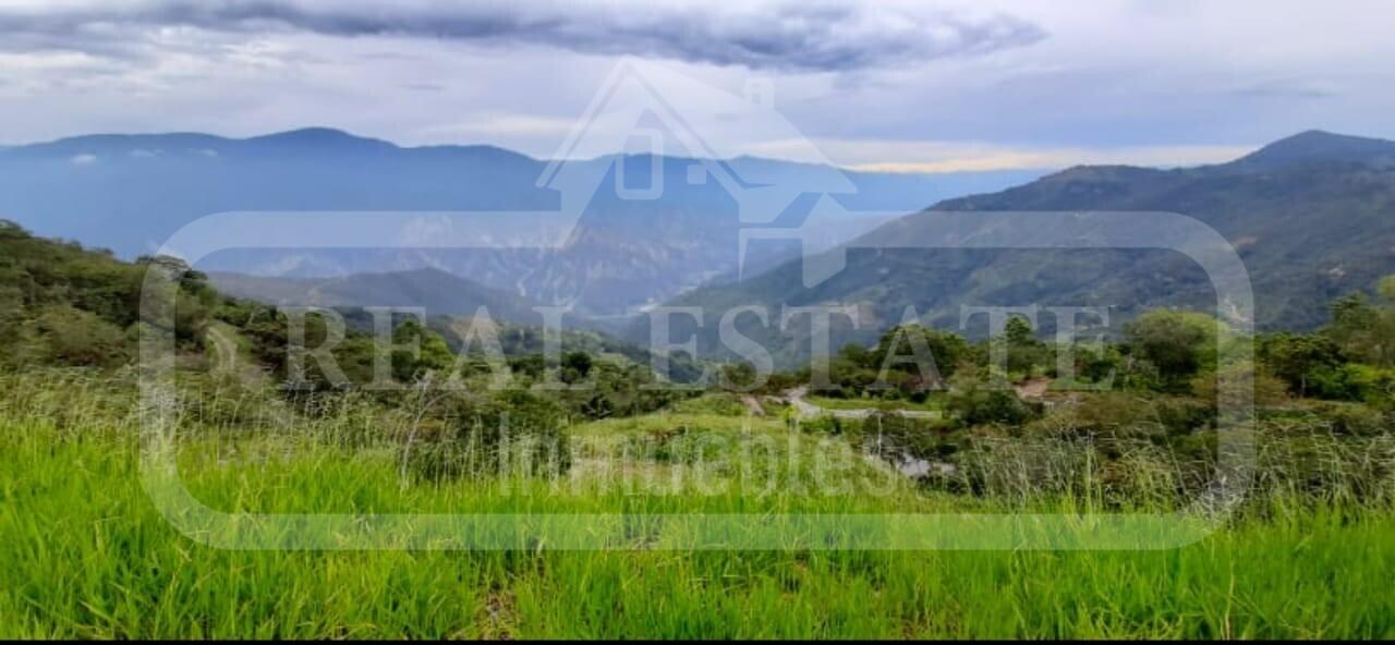 COD 210385 | PARCELA ARATOCA