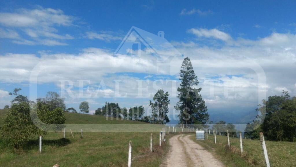 COD 210709 | FINCA MESA DE LOS SANTOS